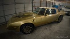 1980 Pontiac Trans Am Quick Look